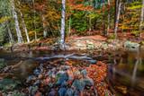 The Hoegne River in the Belgian Ardennes in autumn, Belgium