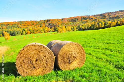 Aluminium Lime groen straw bales in mountains with autumn forest in background