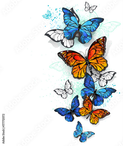 Keuken foto achterwand Vlinders in Grunge Flying butterflies morpho and monarch