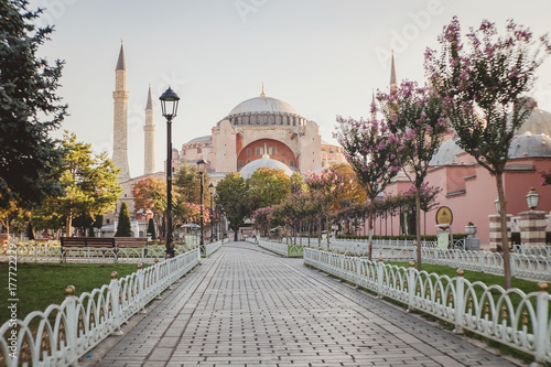 Sultan Ahmet camii Poster
