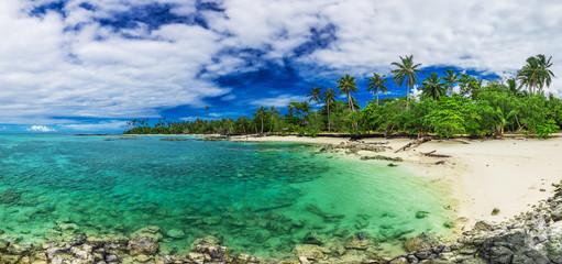 Tropical beach on south side of Upolu, Samoa Island with palm trees