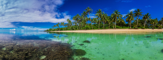 Beach with coral reef on south side of Upolu, Samoa Island with palm trees