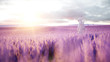 Astronaut with butterflies in lavender field. concept of future. broadcast. 3d rendering.