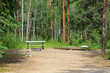 A campsite with a picnic table, fire ring and tent platform
