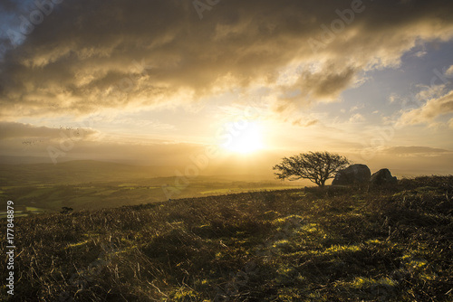 sunrise with beautiful cloudy sky over caradon hill on bodmin moor with lonely t Poster