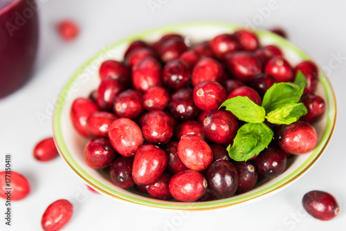 Poster Organic Cranberry on White Background