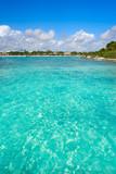 Akumal Caribbean beach in Riviera Maya