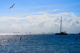 Cancun hotel zone from Isla Mujeres island - 177889400