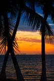 Isla Mujeres island Caribbean beach sunset - 177889653