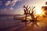 Mahahual Caribbean beach in Costa Maya - 177889810