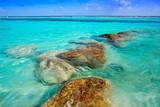 Mahahual Caribbean beach in Costa Maya - 177891204