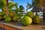 caribbean coconut fruits in Riviera Maya - 177891276