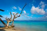 Mahahual Caribbean beach in Costa Maya - 177891626