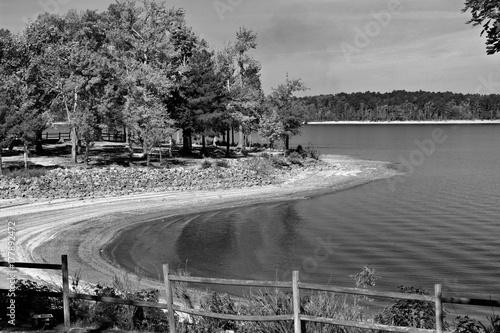 Fotobehang Lente Lake Side Autumn - black and white
