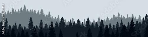 Forêt - 177892827
