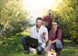 Agronomit and farmers in apple orchard