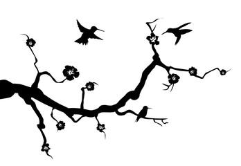 Kolibris wandtattoo