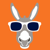 donkey face in glasses vector illustration style flat