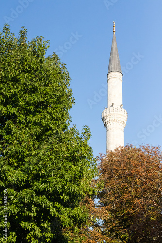 The part of the Blue Mosque in Istanbul Poster