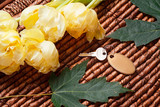 Your key, yellow tulips, green leaves and wooden background - 177977882