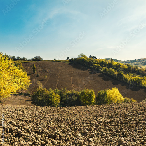 Fotobehang Pool Natural landscape on a sunny day, plowed fields with blue sky