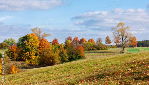 Autumn landscape with fall colored trees © ArtushFoto