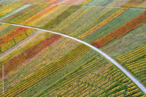 Fotobehang Wijngaard Luftaufnahme Weinberge bei Schnait im Herbst, Remstal, Baden Württemberg, Deutschland