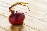 Cipolla rossa - 178100415