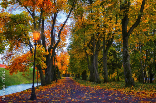 Fotobehang Herfst Autumn in evening park. Scenery autumn background. Colorful fall vivid.