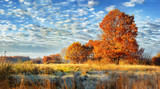 Jesienna sceneria