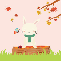 cute rabbit in autumn