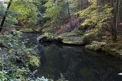 Papiers peints Olive Wild autumn Landscape around the Creek Kamenice in the Czech Switzerland with Sandstone Boulders, Czech Republic