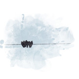 Birds sitting on the wire with blue sky background. Watercolor painting (retouch). - 178302888