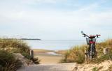 Vélo Plage Rivedoux Ile de Ré France - 178326460