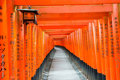 Red Gates of Senbo Torii in Fushimi Inari Taisha in Kyoto City, Japan Poster