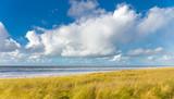 Beach of Egmond aan Zee - 178335246