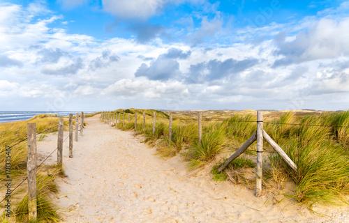 Fotobehang Noordzee Dunes on the beach