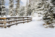 Snowy Path Lined with a Wooden Fence on a Sunny Winter Day