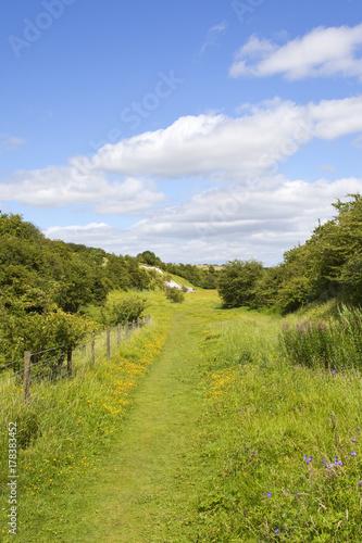 Foto op Plexiglas Pistache yorkshire nature reserve