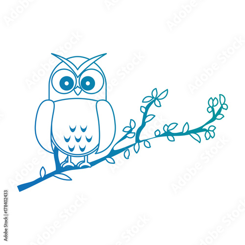 Aluminium Uilen cartoon owl bird in branch