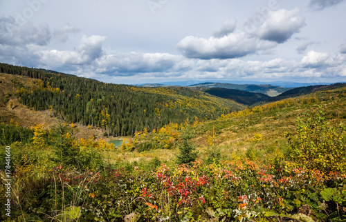 Landscape with trees at autumn in Tatra mountains, Slovakia