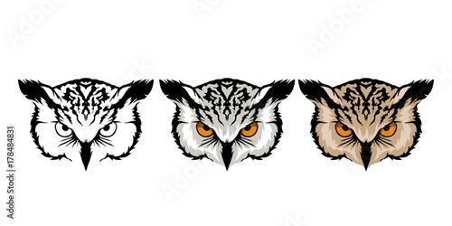 Plexiglas Eagle color set of owl heads on white background.