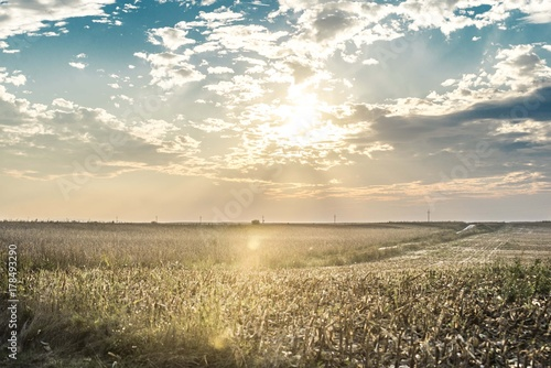 Foto op Plexiglas Beige agriculture landscape