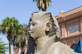 Head of the Sphinx in the territory of the Cairo Museum