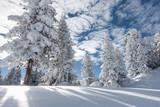 Winterlandschaft © by paul