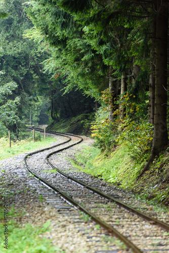 Papiers peints Route dans la forêt wavy railroad tracks in wet summer day in forest