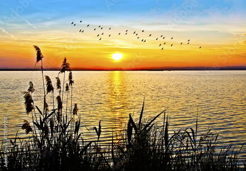 Fotobehang Meloen atardecer en el lago de colores