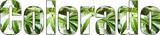 Colorado Marijuana Logo With Weed Leafs High Quality