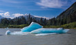 Ice Floes on River in Alaska