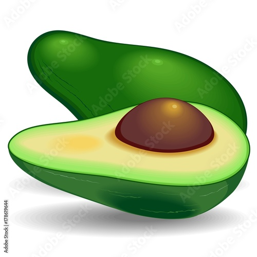 Tuinposter Draw Avocado Exotic Healthy Fruit